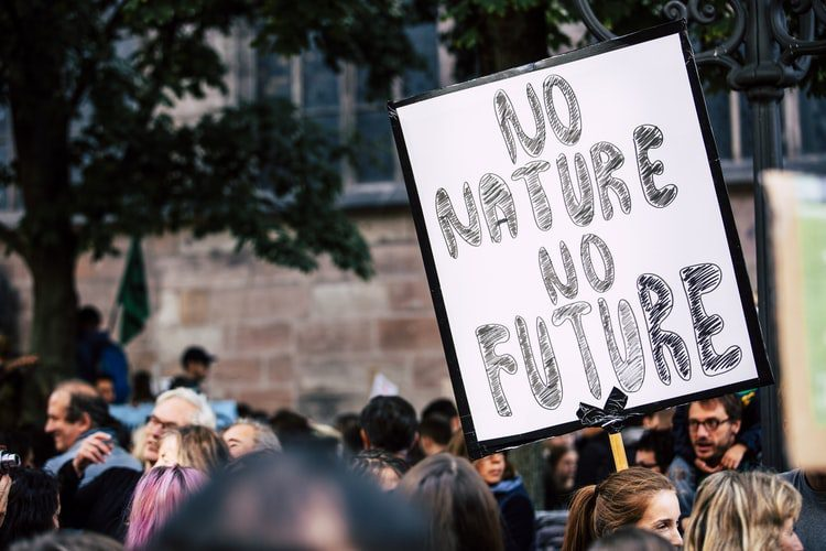 Climate Despair: Are We Really Doomed?
